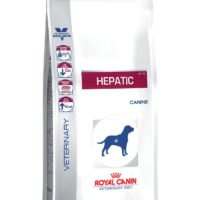 Hepatic Canine