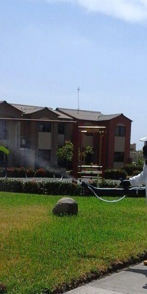 fumigacion-casas-villa-club-2